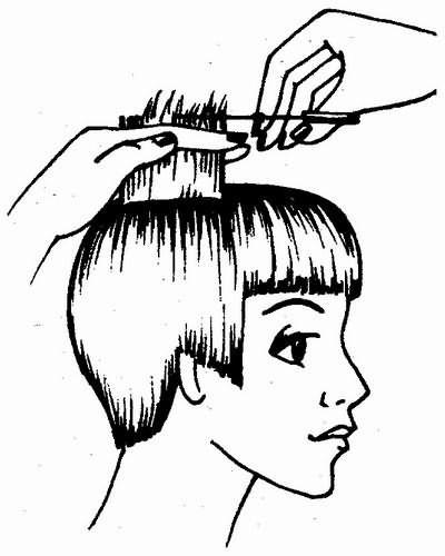 стрижка волос теменной зоны по контрольной пряди