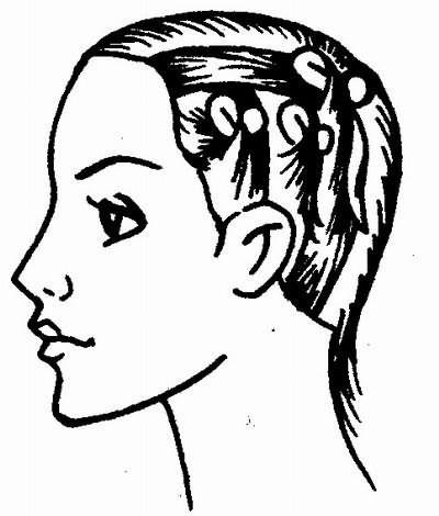 деление волос на зоны