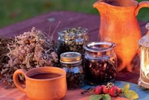 Важную роль в домашнем уходе за локонами играют отвары из различных лекарственных трав.