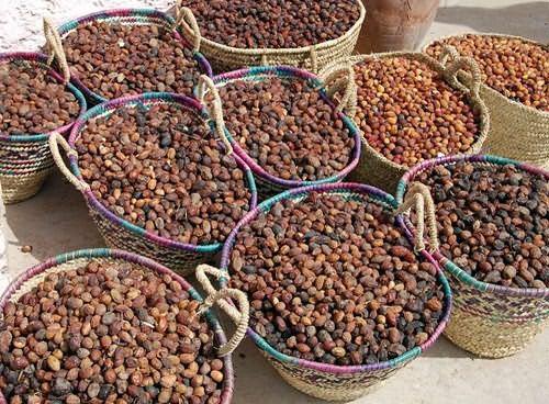 Урожай аргании, очищенный от мякоти
