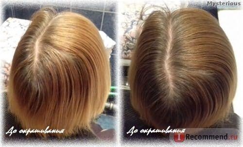 Стойкая крем-краска для волос Schwarzkopf Palette Фитолиния - До окрашивания