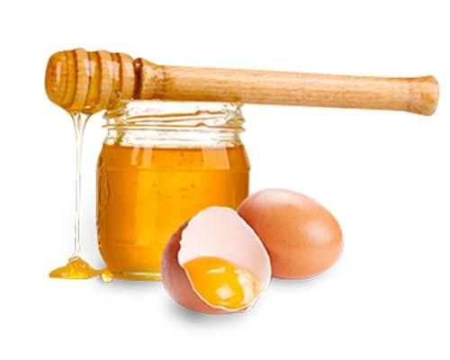 Желток и мед
