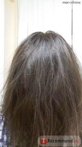 Краска для бровей и ресниц East Nights УСЬМА пудра листьев для окрашивания и стимуляции роста бровей, ресниц и волос Shams фото