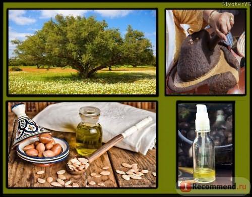 Дерево Аргания, плоды, пресс для холодного отжима,масло Melvita