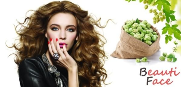 Средства из шишек хмеля позаботятся об ослабленных волосинках жирного типа.