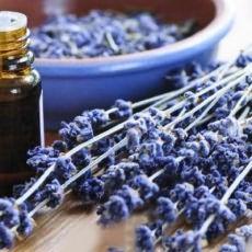 эфирное масло лаванды для волос