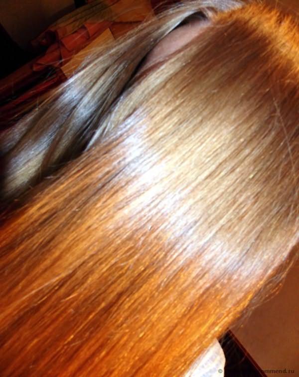 Шампунь Natura Siberica для нормальных и жирных волос глубокое очищение и уход Oblepikha Professional фото