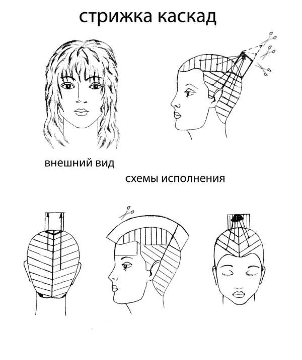 Схемы стрижки