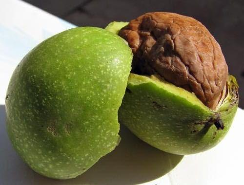 Кожура зеленых грецких орехов поможет восстановить натуральный черный цвет