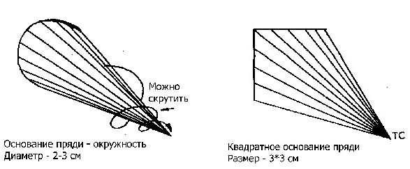 Основание контрольной пряди (схема)