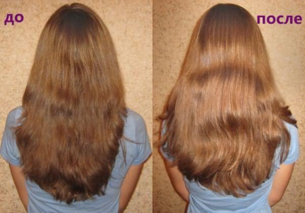 Осветление каштановых волос ромашкой