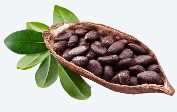 maslo-kakao-svojstva-i-primenenie-otzyvy_05