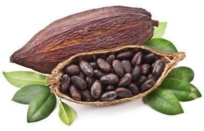 масло какао для волос применение