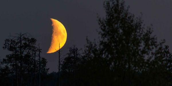 Подрезание кончиков волос на растущей Луне