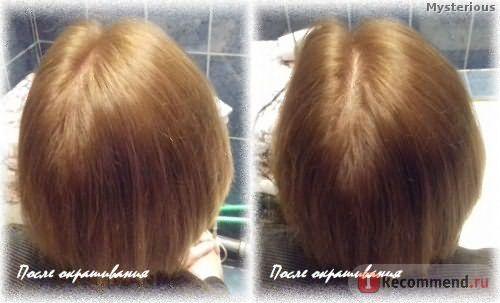 Стойкая крем-краска для волос Schwarzkopf Palette Фитолиния - После окрашивания