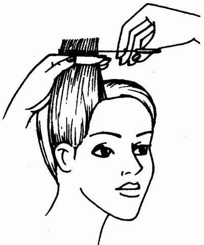 градуировка волос по контрольной пряди
