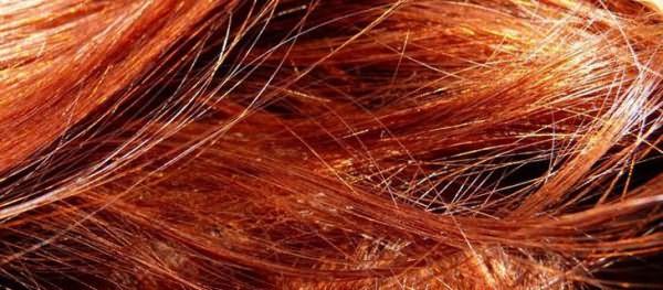 Хна для волос для красивого цвета и блеска