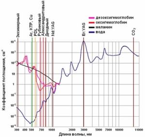 Поглощение энергии разных видов луча клетками