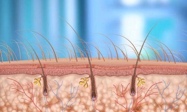 Препараты для мезотерапии волос. Испания
