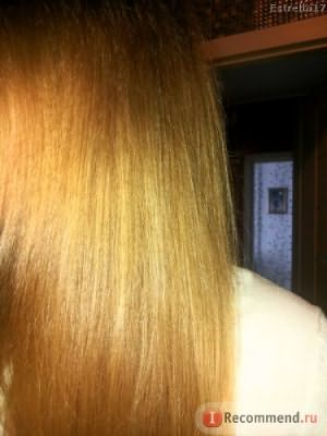Шампунь Ecolab Балансирующий для жирных волос фото