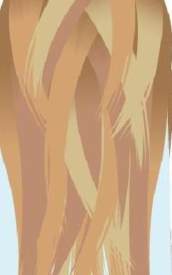 3d окрашивание волос технология 6