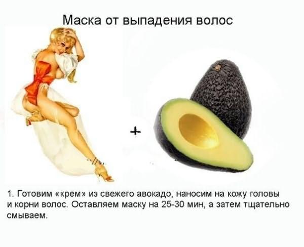Авокадо – кладовая всех витаминов и минералов для организма