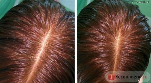 Хна для волос Aroma-Zone Йеменская Henné Rouge du Yémen фото