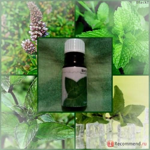 Эфирное масло МедикоМед Мята фото
