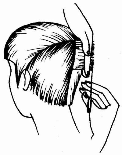 стрижка волос теменной зоны