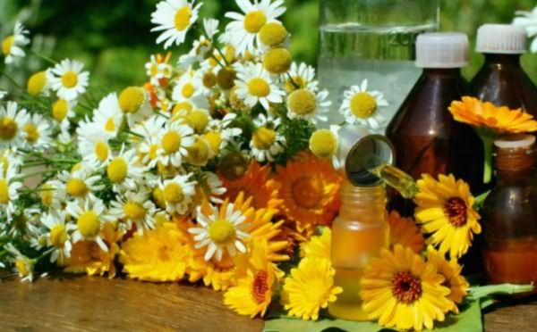 Лекарственные травы и отвары на их основе