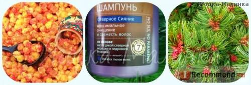 Шампунь Natura Siberica Kamchatka Северное сияние фото
