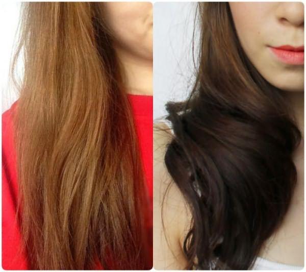 краска для волос сьео олео интенс отзывы