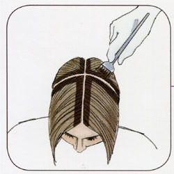 Схема разделения волос на зоны