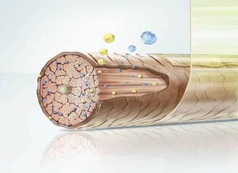 Защитная пленка оберегает волосы от вредных внешних воздействий
