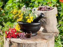 Бальзам-ополаскиватель готовьте самостоятельно из лекарственных трав