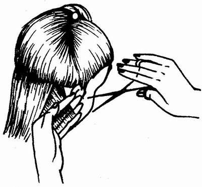 пряди волос оттягиваются перпендикулярно и срезаются с уменьшением длины волос к шее